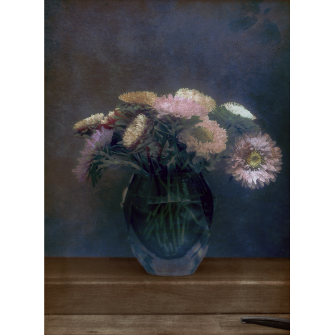 Asters in glass vase with shears