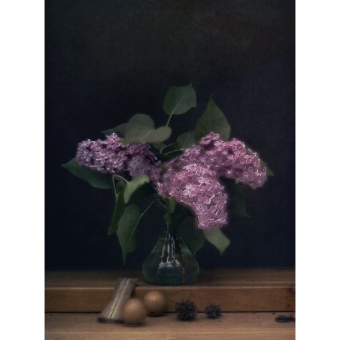 Purple Lilacs with Table Tennis handle