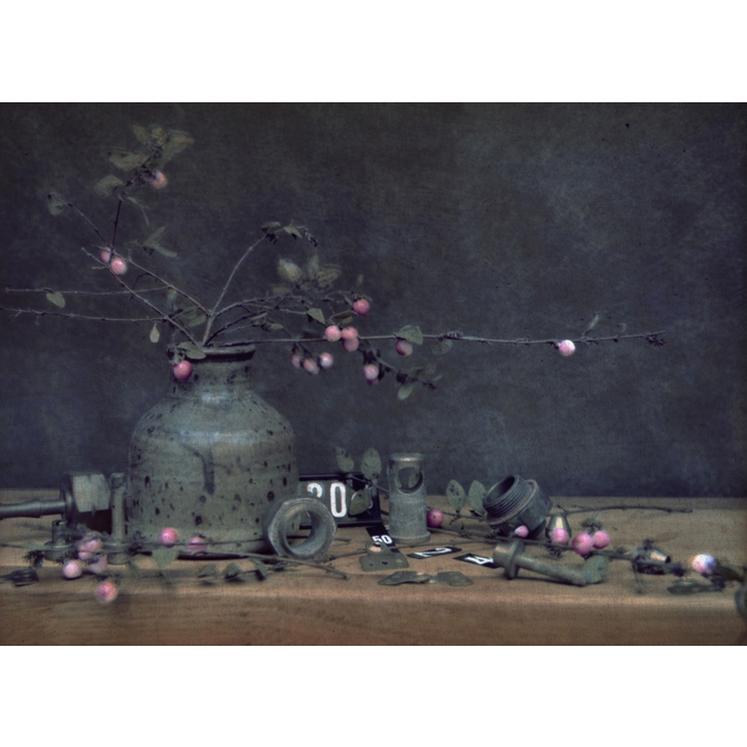 Snow berries in clay vase with price tags