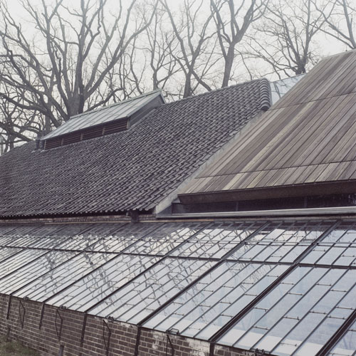 Greenhouse with roofs